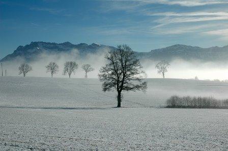 Winterzauber komp